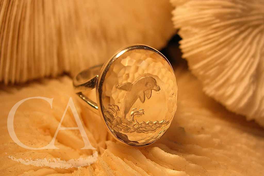 anillo-delfin.jpg